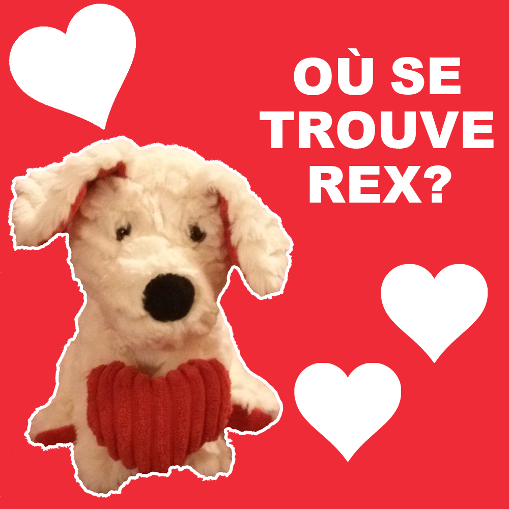 [VALENTINE'S DAY CONTEST] WHERE'S REX?